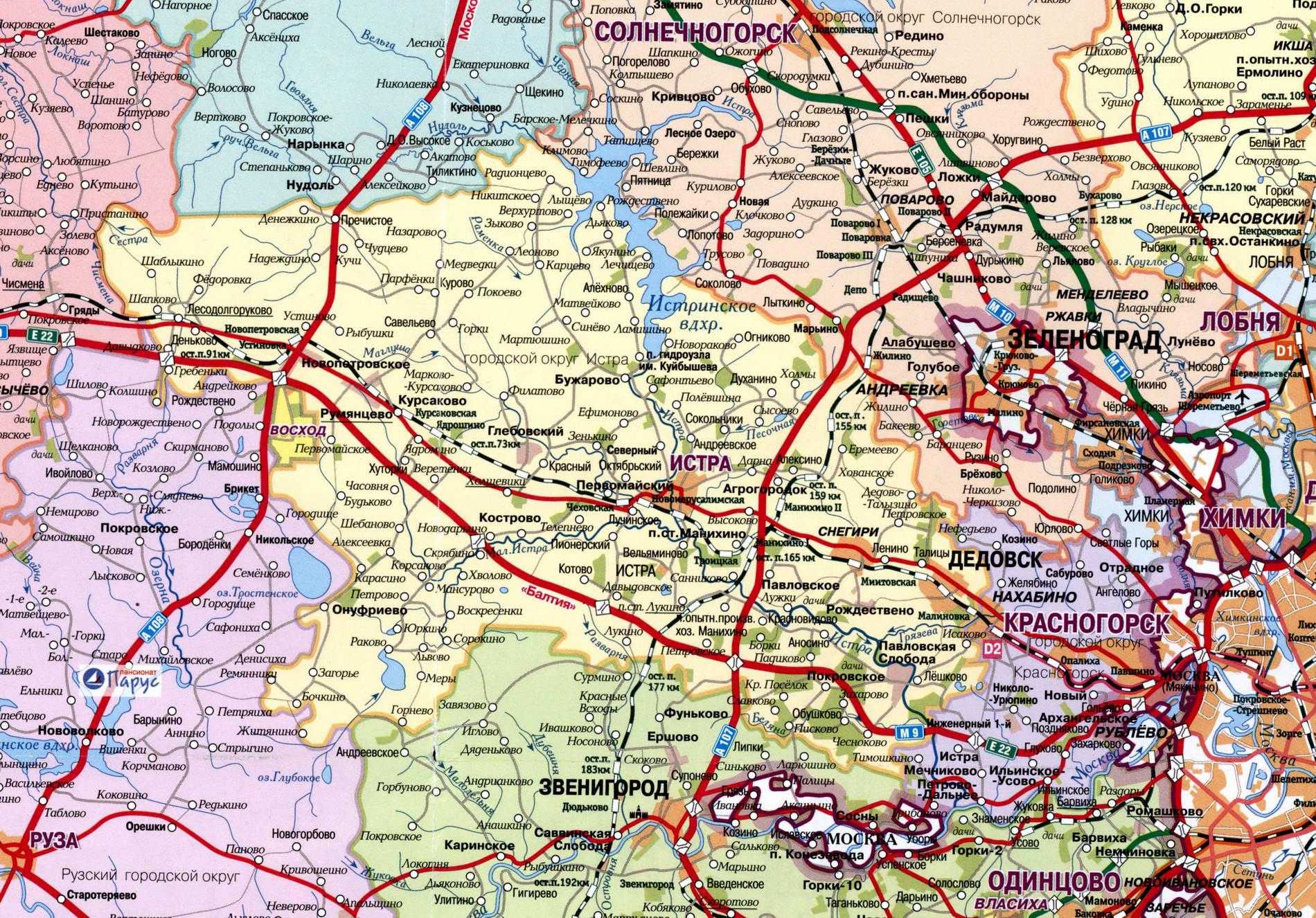 грибы москвы и московской области